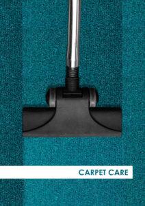 bic-aircraft_carpet-care